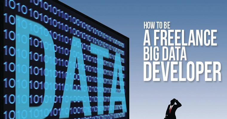 Freelance Big Data Developer