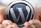 9 Top Tools for WordPress Freelancers, Designers & Developers