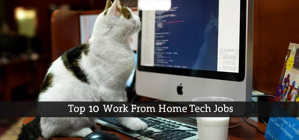 Top-10-Work-From-Home-Tech-Jobs