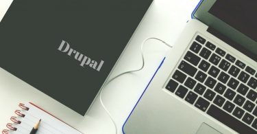 Technical Skills of Freelance Drupal Developers and Amplify your Career