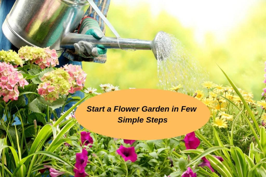 flower garden -f (1)