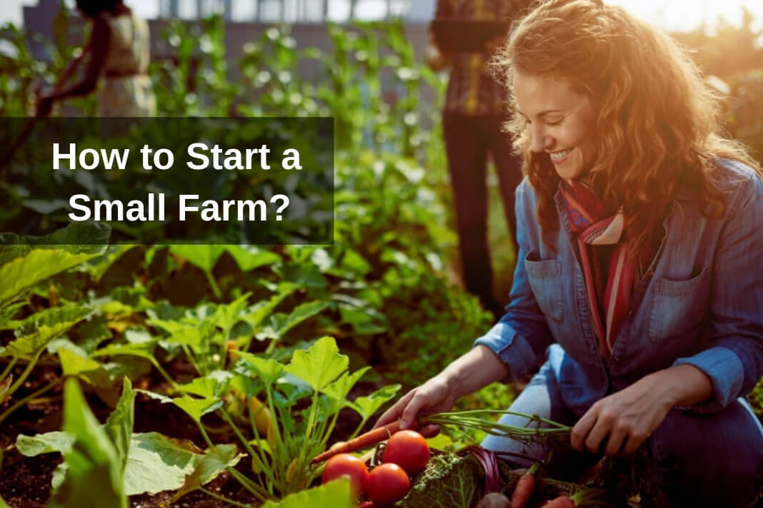 Start a Small Farm in your country