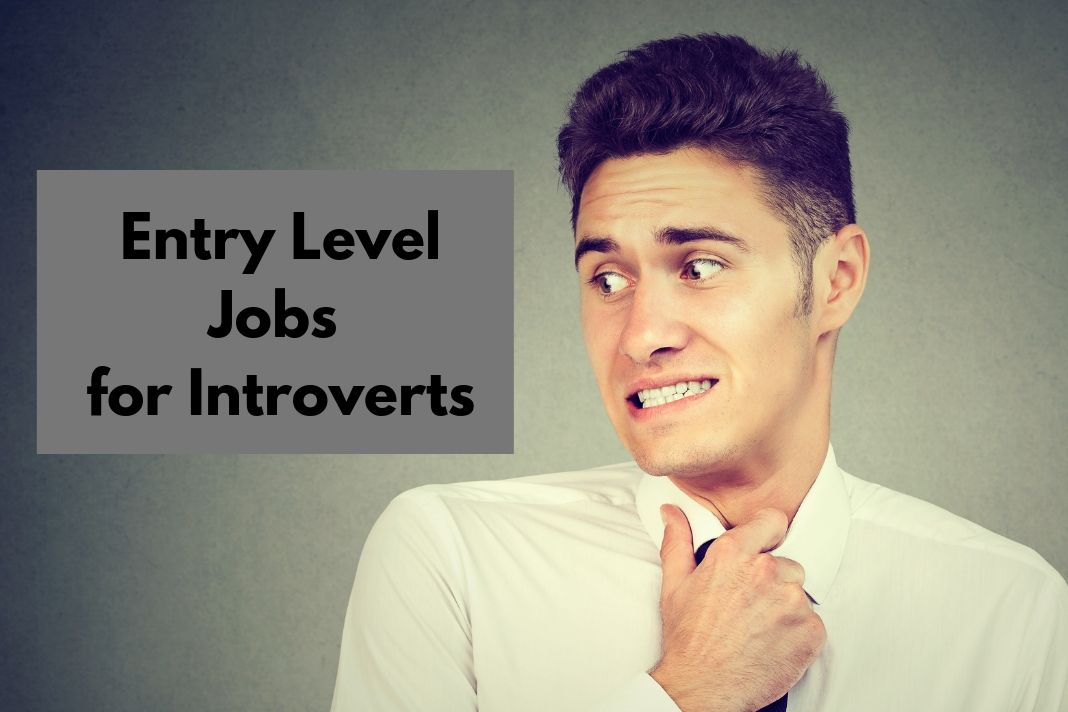 Entry Level Jobs for Introverts