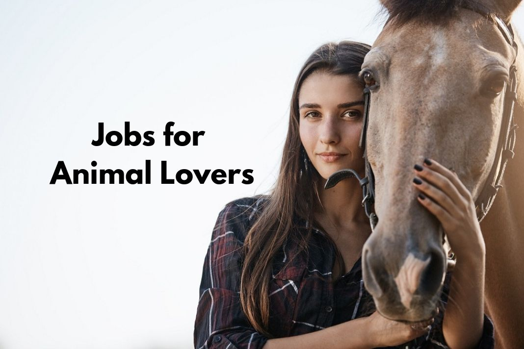 Jobs for Animal Lovers