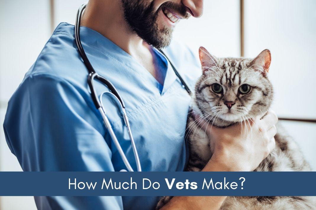 vets salary