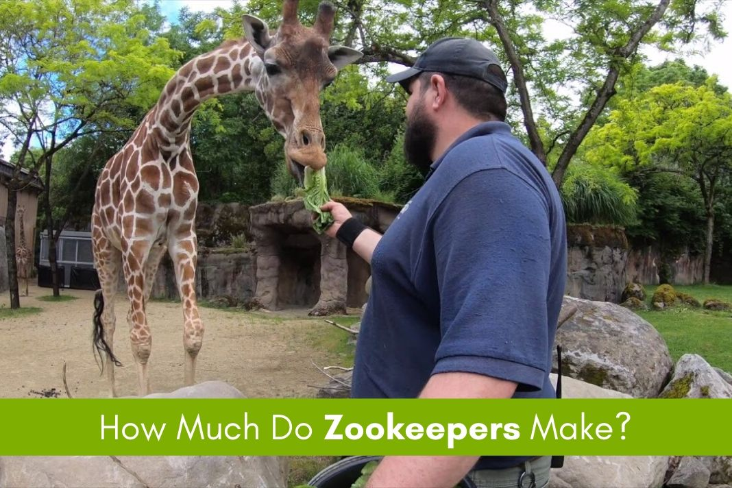 zookeepers salary